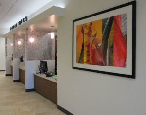 Art in Healthcare is An Integral Part of The Design Plan